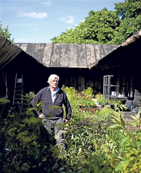 Piet oudolf 39 s garden at the serpentine gallery pavilion for Piet oudolf serpentine gallery