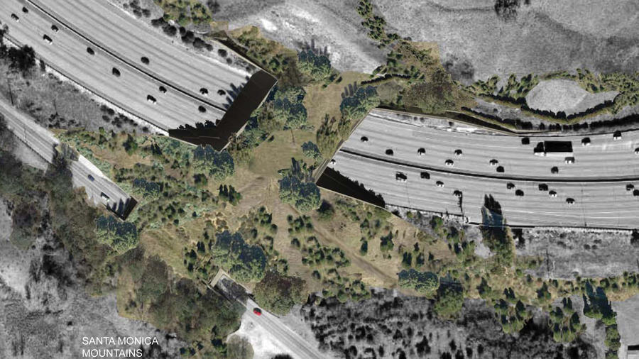 Rendering of the proposed landscaped bridge above the 101 Freeway near Liberty Canyon Road in Agoura Hills, CA. Image: Resource Conservation District, via LA Times.