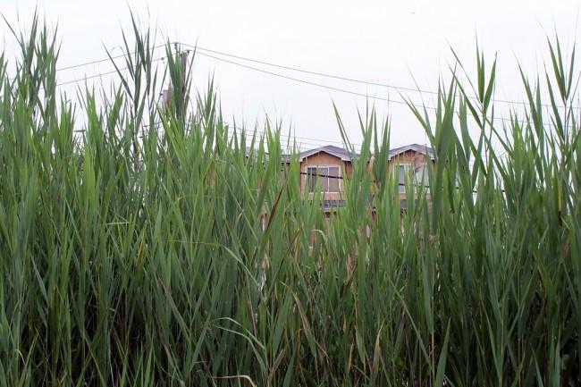 Image via urbanomnibus.net