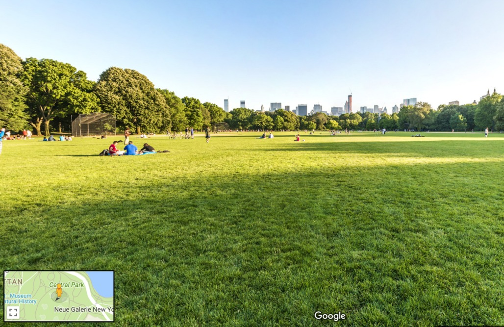 View of Central Park from Google Maps