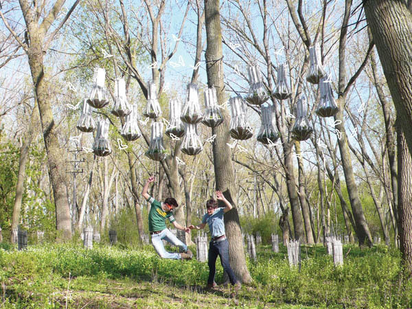 FIRST PLACE: BAT CLOUD, Joyce Hwang