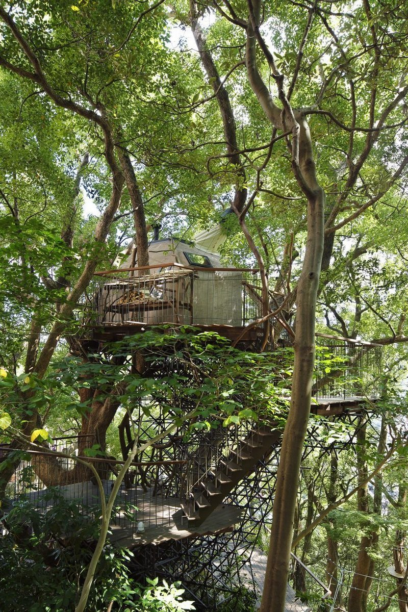 Built around a 300-year old camphor tree, the 3D-designed steel trellis structure supporting the treehouse doesnt even touch the tree. (Photo: Koji Fujii / Nacasa and Partners Inc.; Image via spoon-tamago.com)