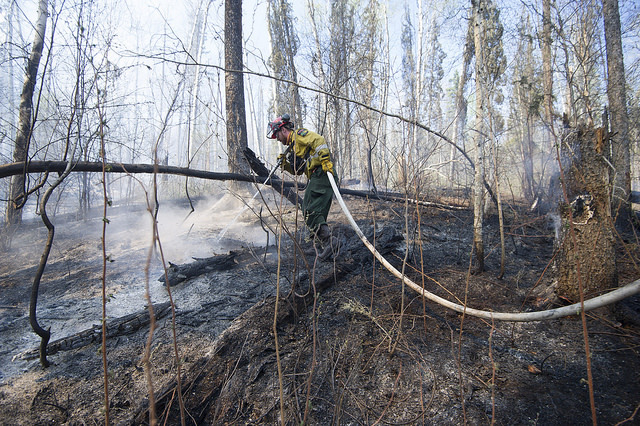 A member of Wildfire Management Albertas Wild Mountain Unit out of Hinton, hoses down hotspots in the Parsons Creek area of Fort McMurray Friday, May 5, 2016. Photo by Chris Schwarz/Government of Alberta.