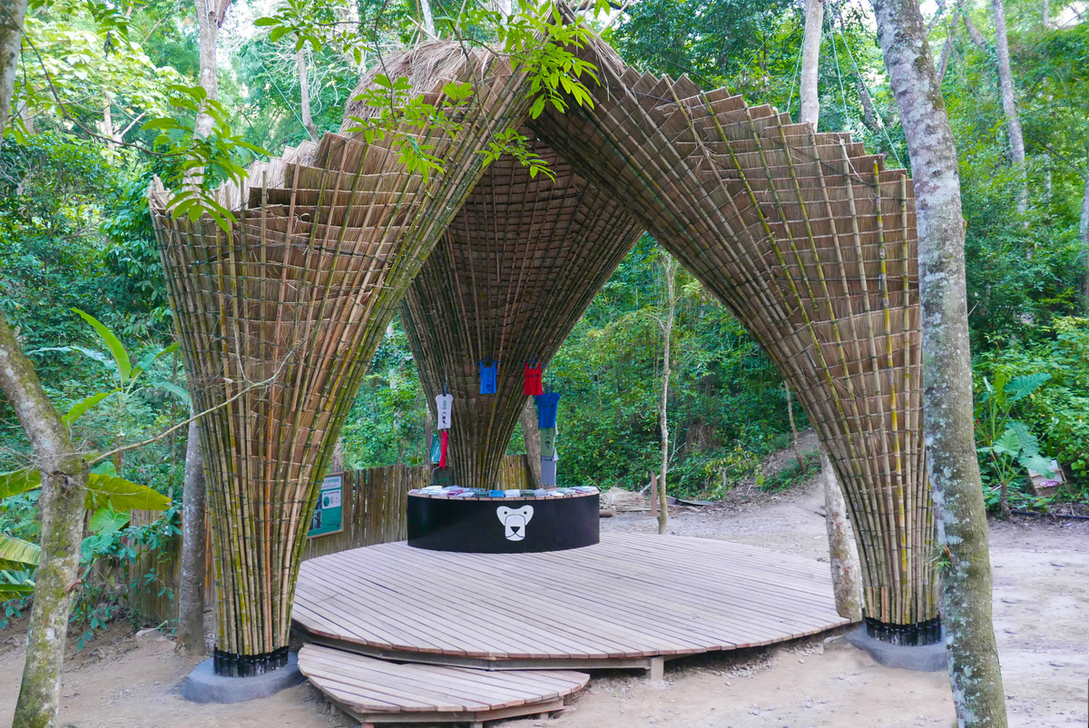 Bamboo Trees | Atelier COLE | Archinect
