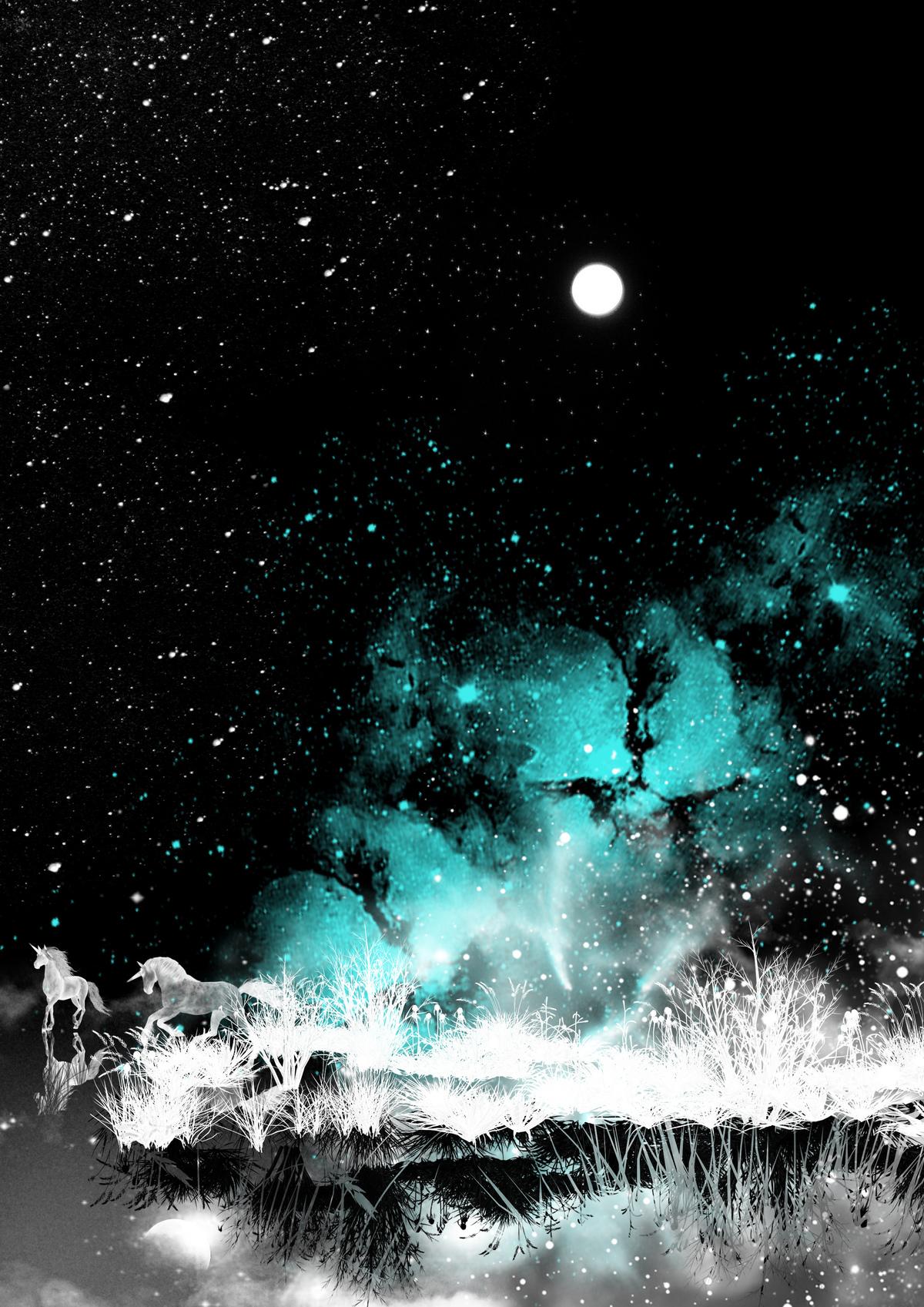 unicorn's night