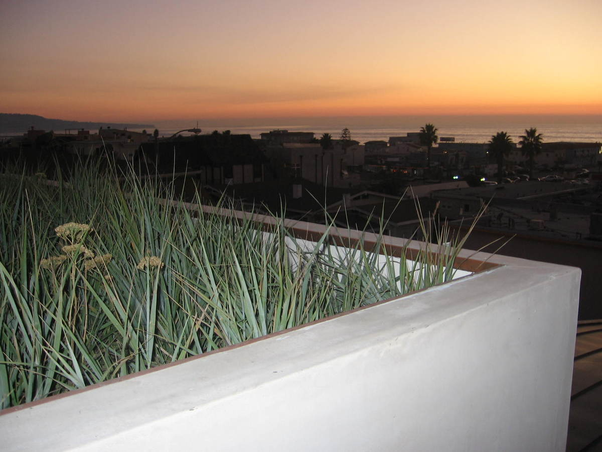 green roof at sunset