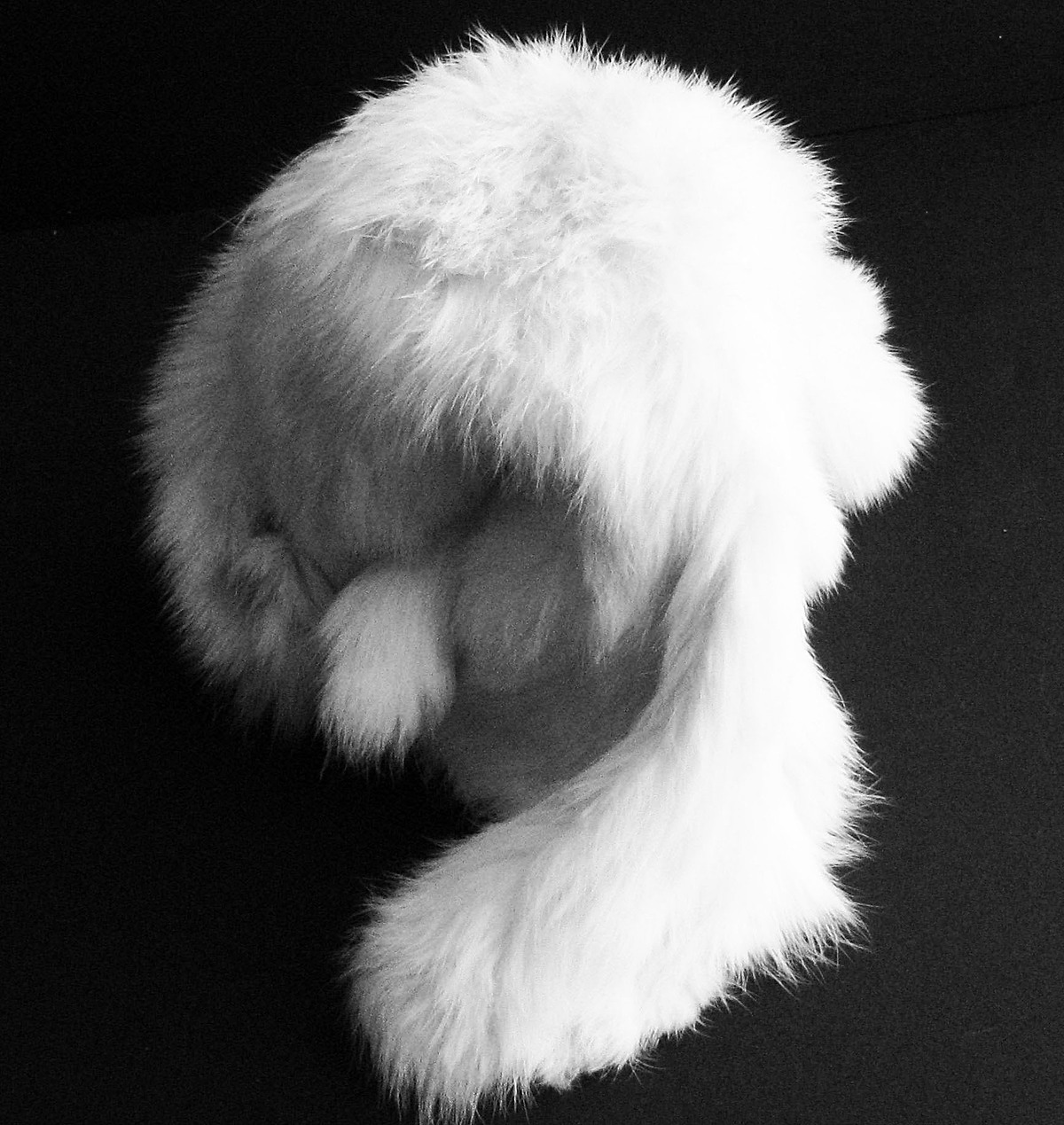 Final Model with Fur