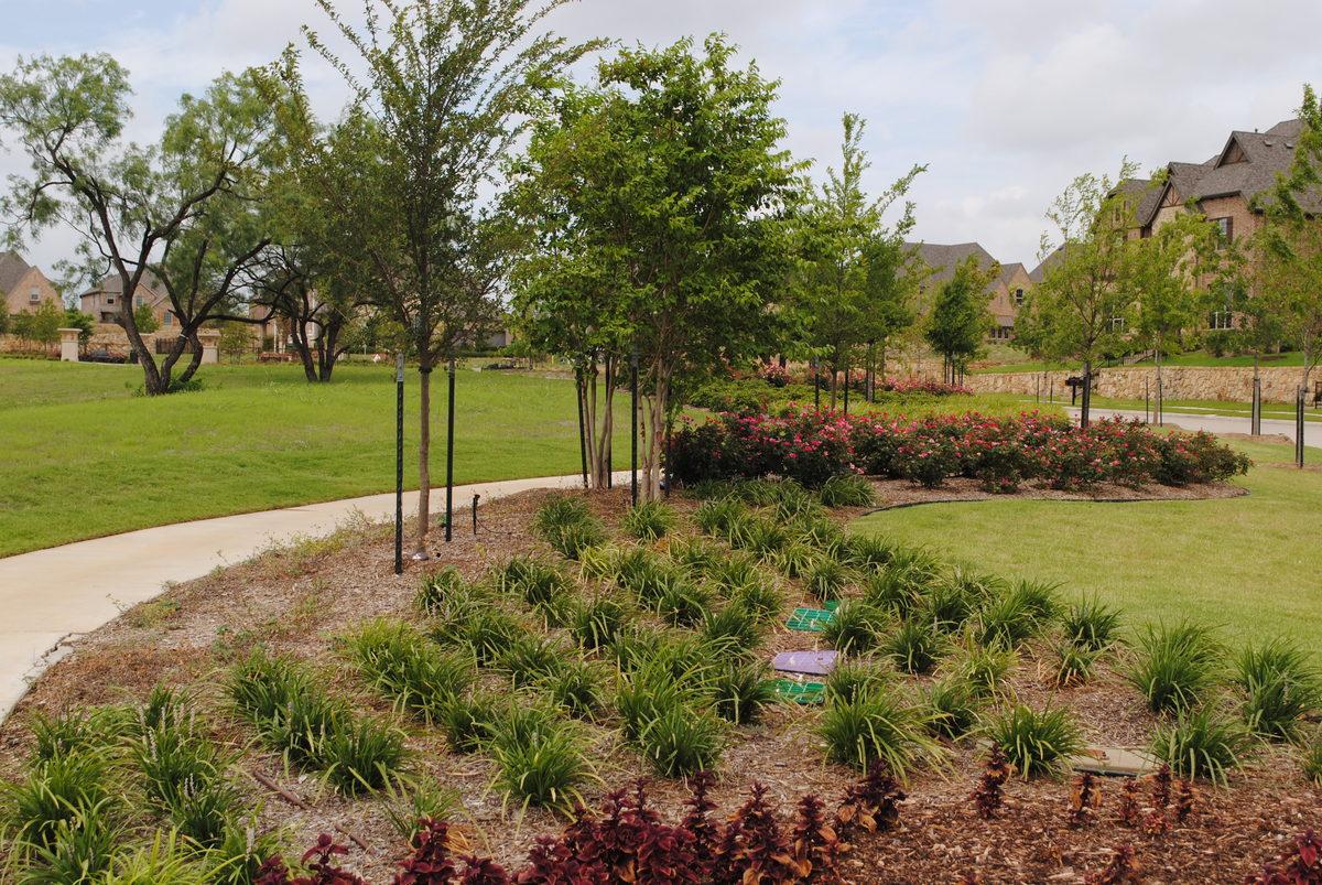 Greenbelt Planting Design-1