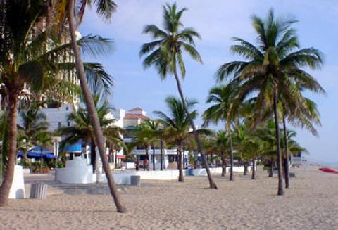 Beach Restoration-1