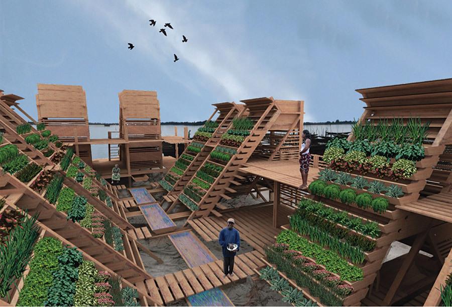 2013 Award Winner: Maa-Bara: Catalyzing Economic Change & Food Security by Designing Decentralized Aquaponics Production