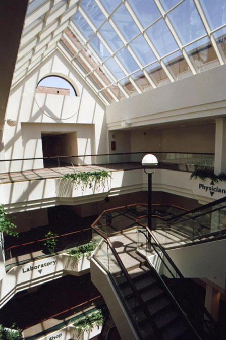 The atrium of the Medical Mall.