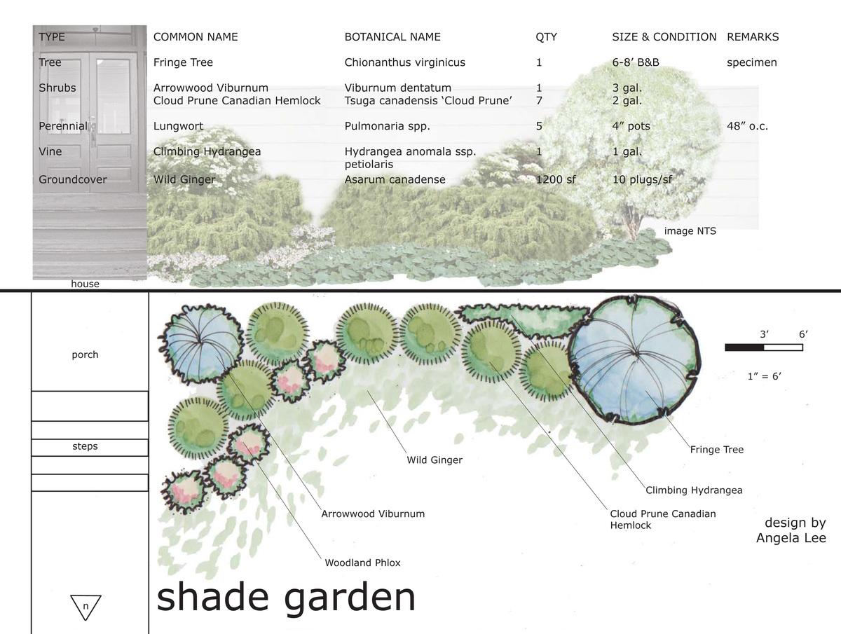 Planting design studio exercises angela lee archinect for Plant landscape design