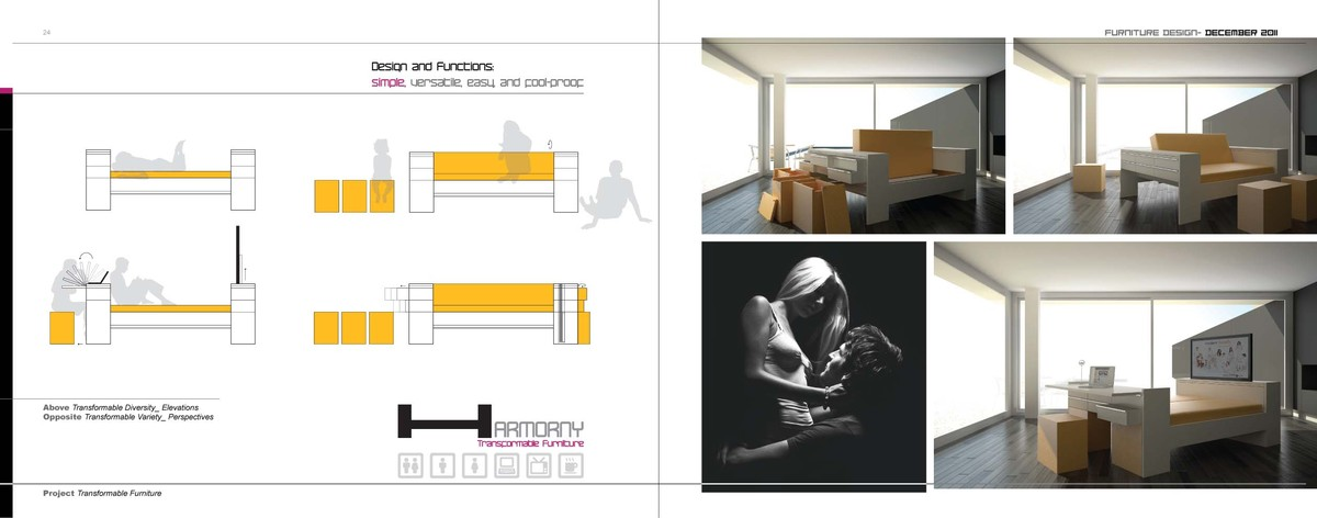 Main Page- Main Perspective & Vertical Section & Floor Plan