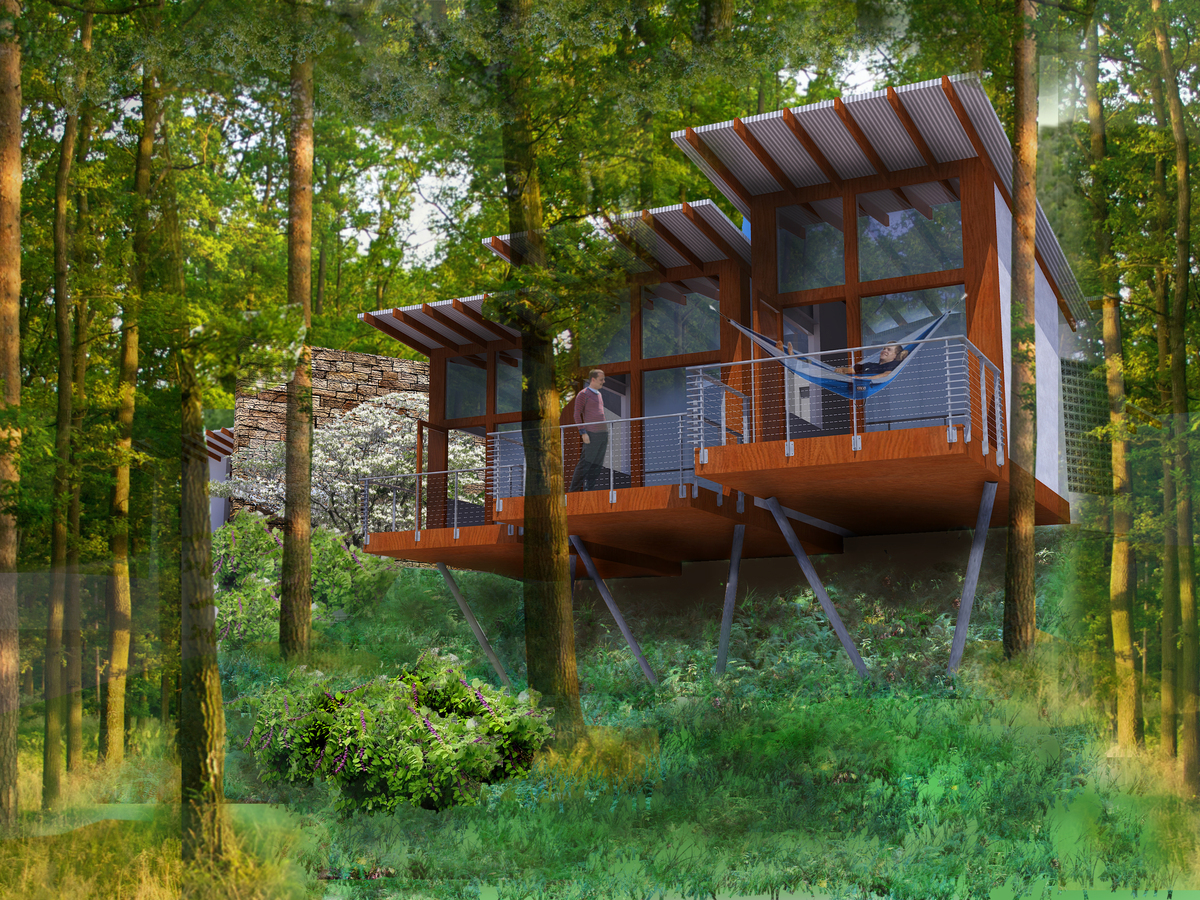 Treehouse bedrooms for the boys