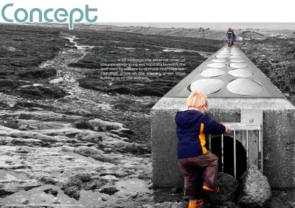 THIRD PLACE: HANNAFORE TILE-POOL, Daniel Metcalfe