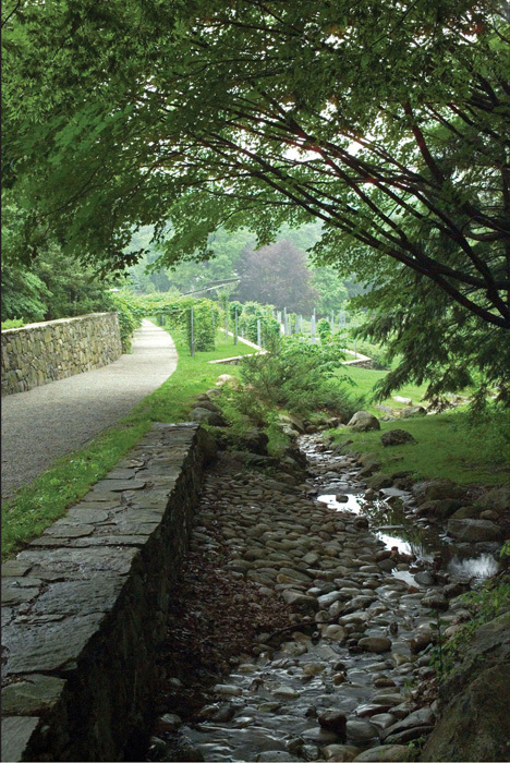 The upper pathway connects to the main arboretum and follows a fieldstone wall that emerges from the slope and grows to 8 feet in height. photo Andrea Jones