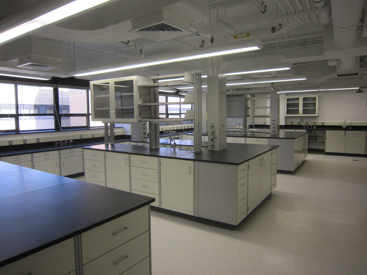 Example of Typical Laboratory