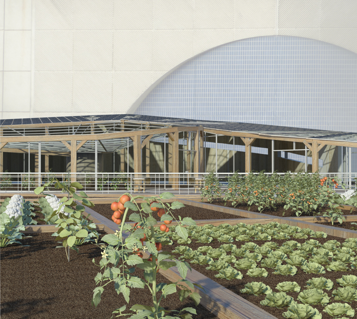 Harlem Piers Farm proposal vegetable gardens and greenhouse.