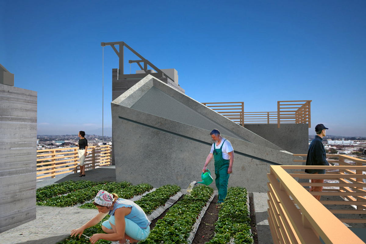 View of the Rooftop Garden