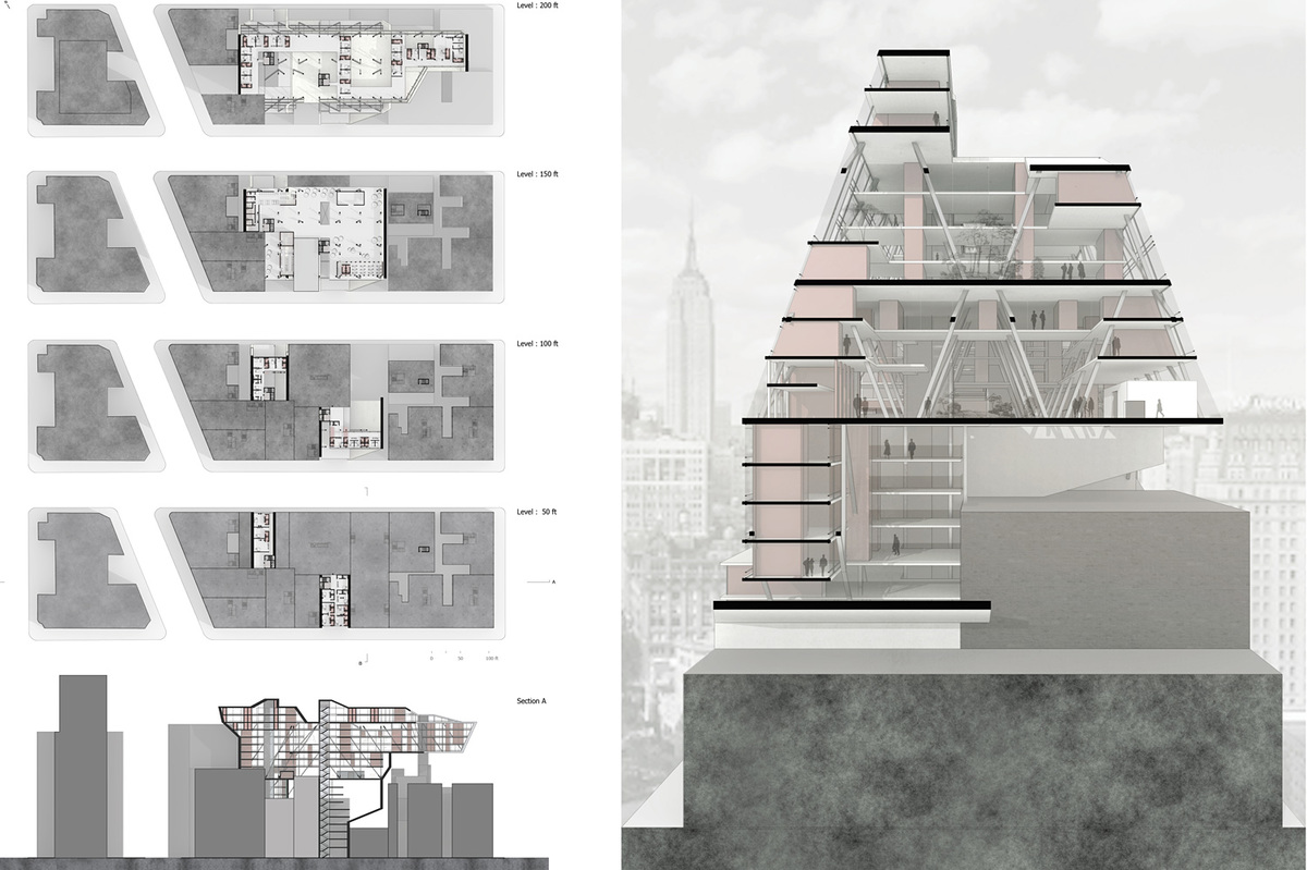 College of Architecture and Design
