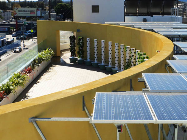 Rooftop Garden with Solar Panels