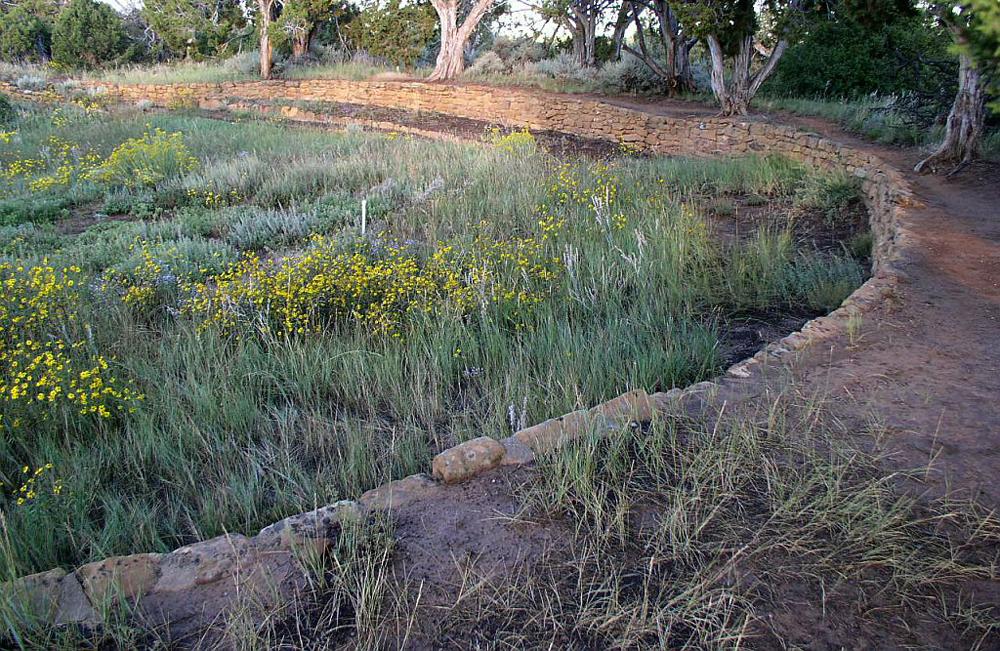 Ancient Reservoir