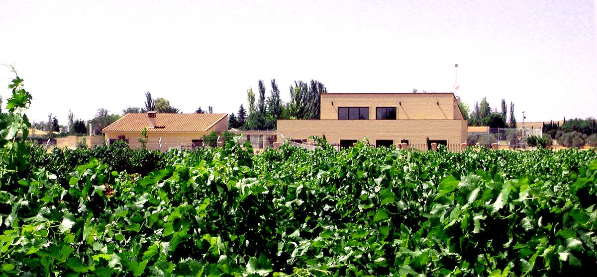 House + Vineyards