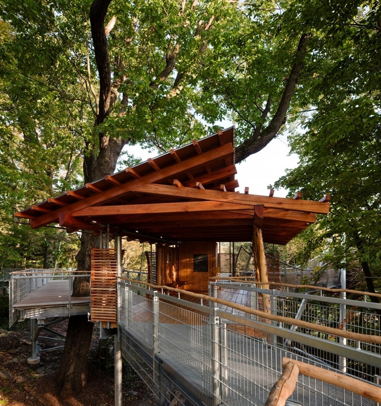 Tree Adventure in Philadelphia, PA by Metcalfe Architecture & Design