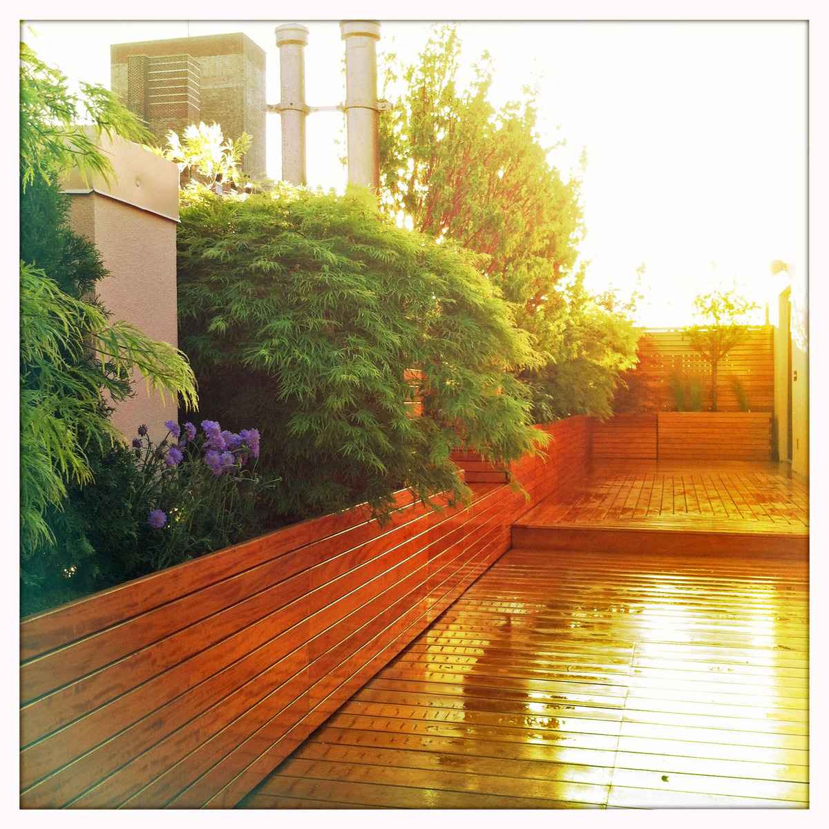Nyc garden design rooftop zen garden for yoga studio for Wooden studios for gardens