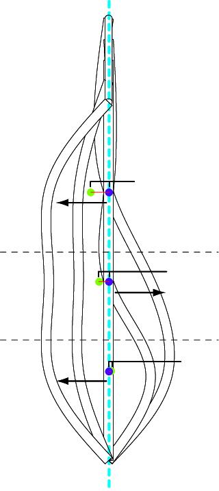 Harvesting Walkway Configuration | Section