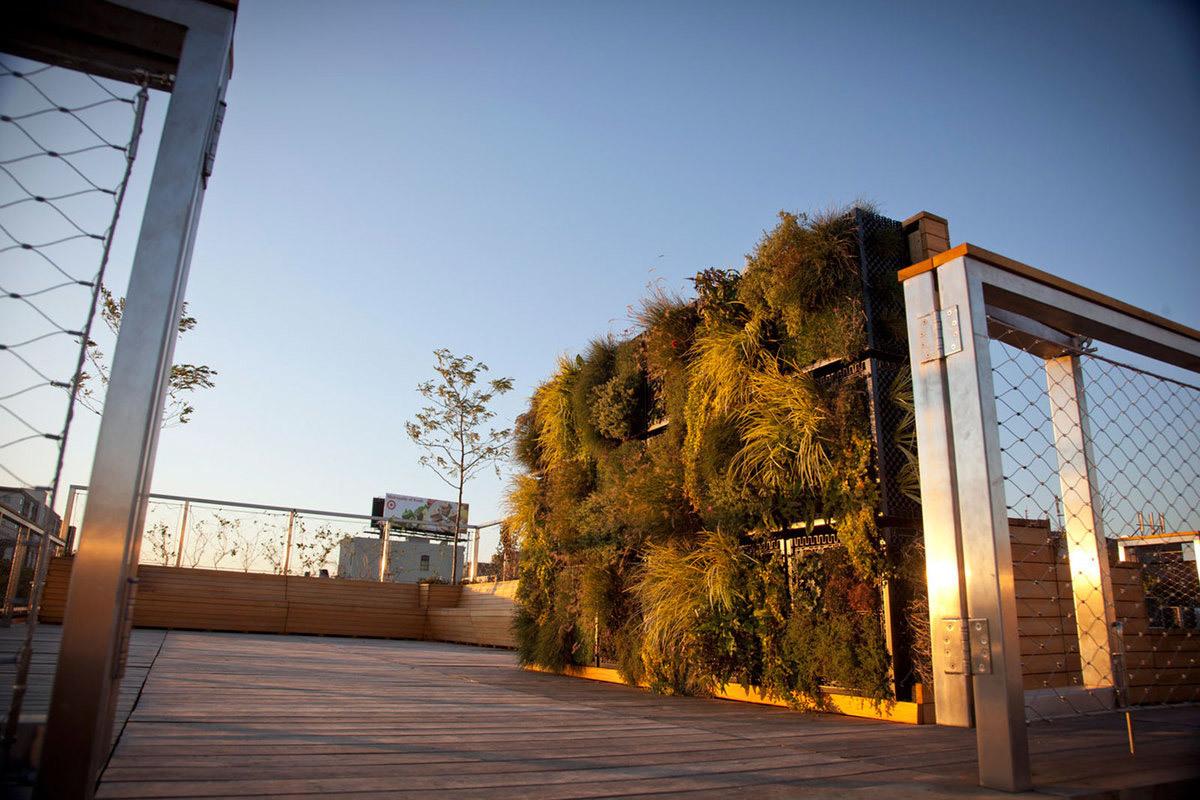 AEA Headquarters in Bronx, NY by Future Green Studio