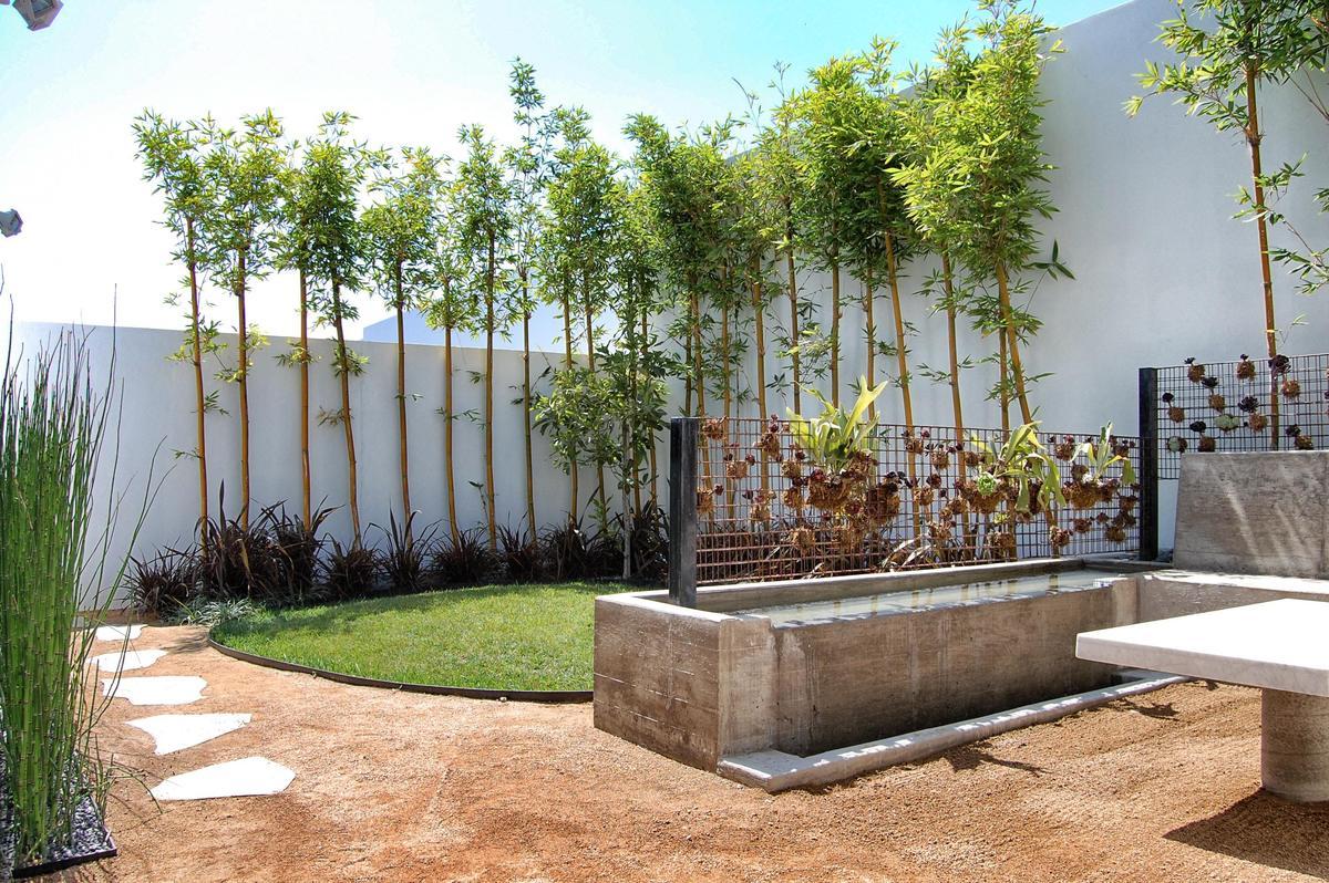 Private garden of a house
