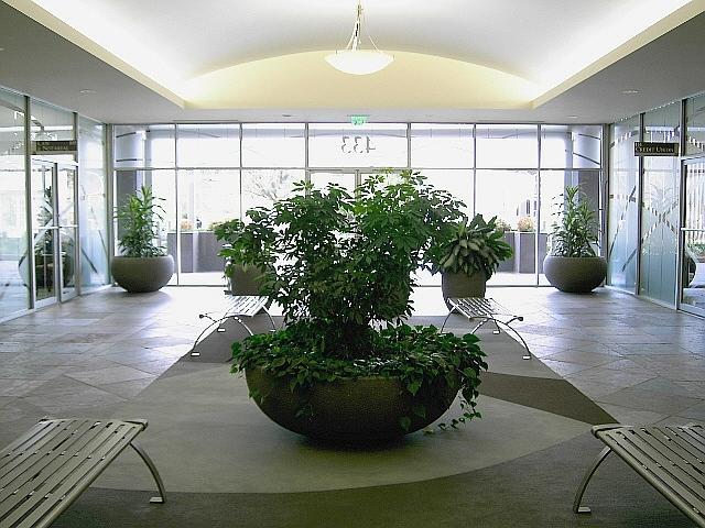 NEW - Main 1st Floor Lobby