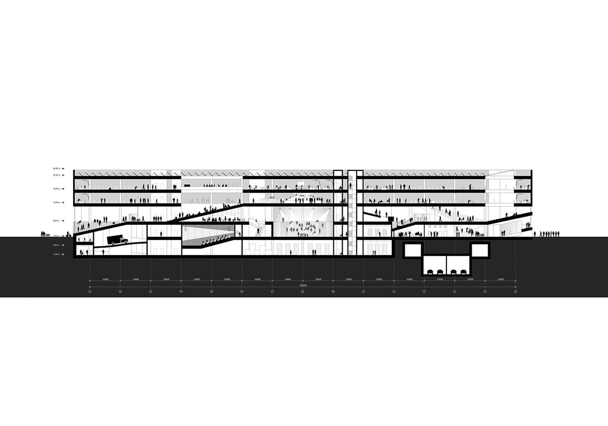 Section AA (Image: OYO + office9 + Ingenium)
