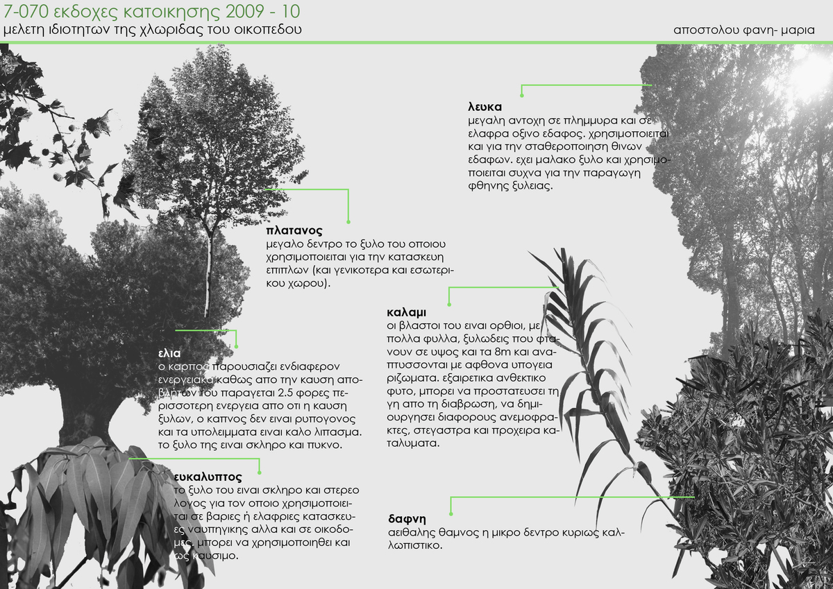 Flora Types and Characteristics