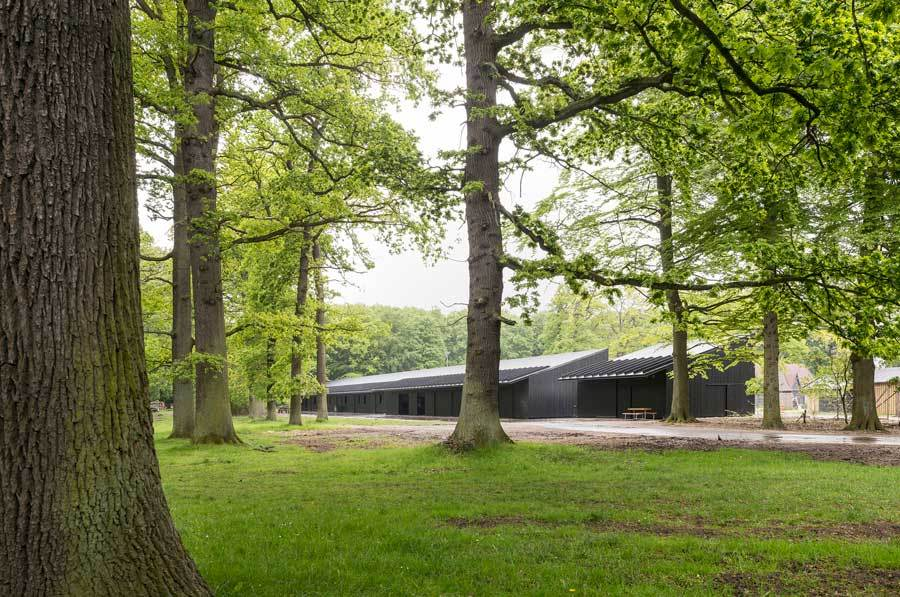 The Danish firm Bertelsen & Scheving recently designed new stables for the horses that pull carriages in Dyrehaven, a popular park outside of Copenhagen. Credit: Bertelsen & Scheving