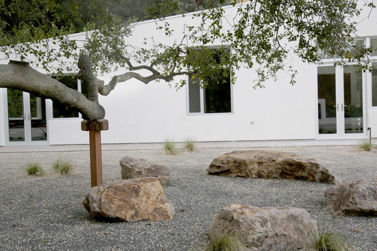 Image courtesy of Terremoto Landscape.