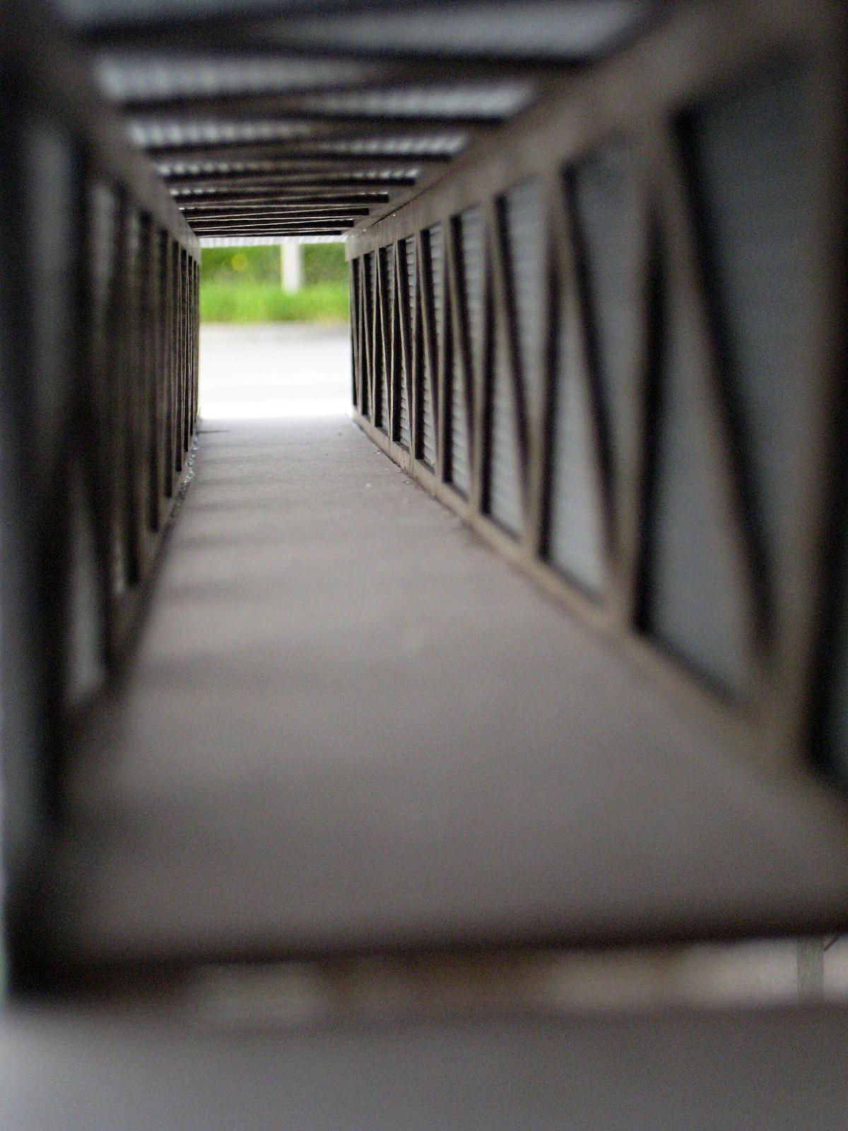 Circulation Bridges