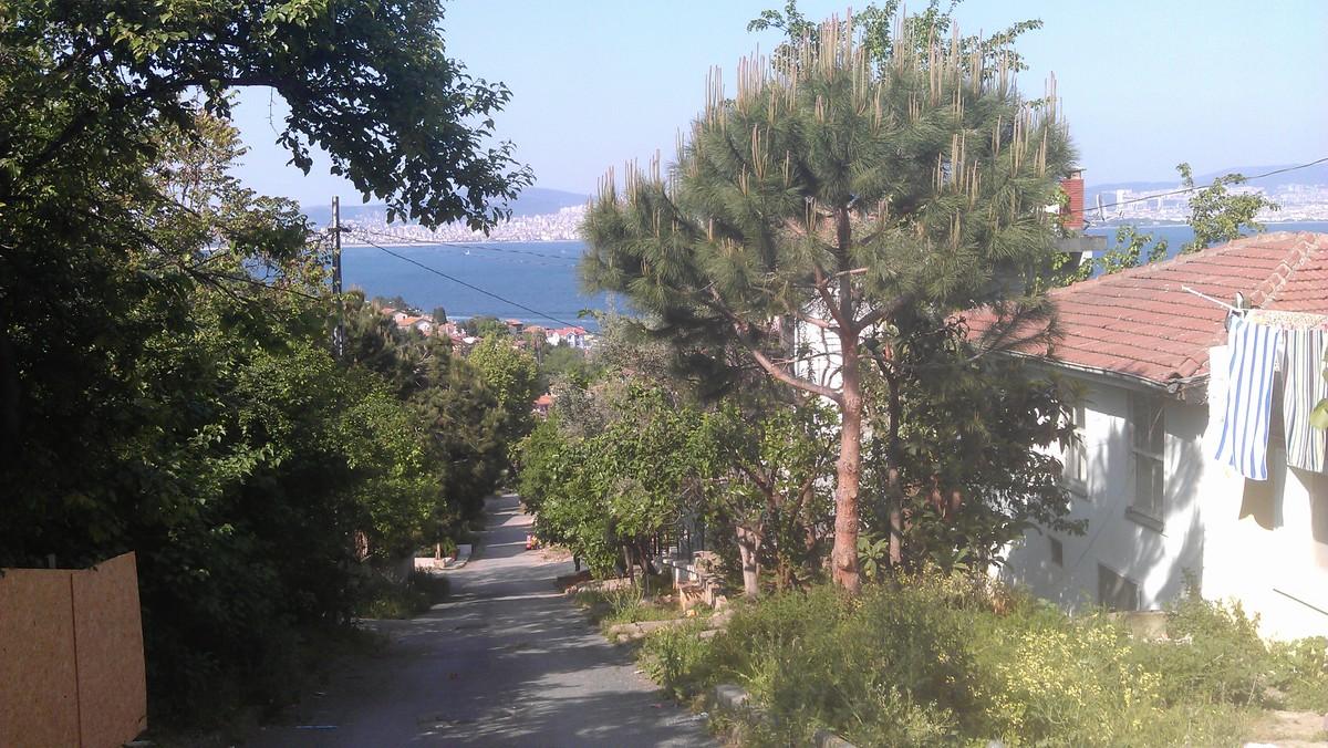 On Heybeliada island