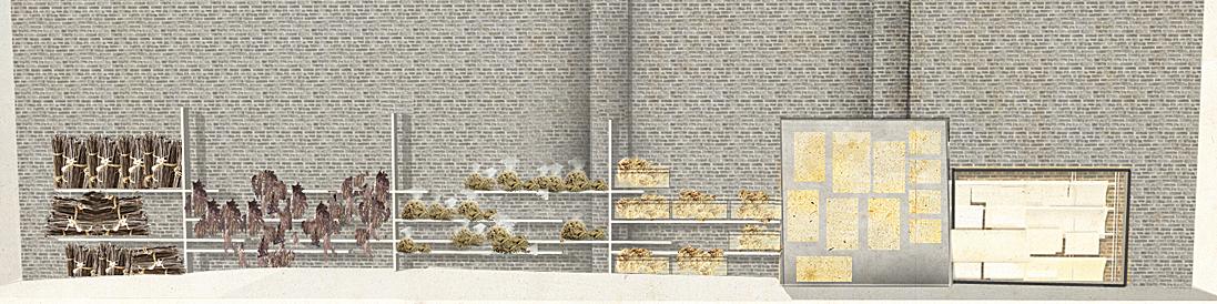 Storage Wall Elevation