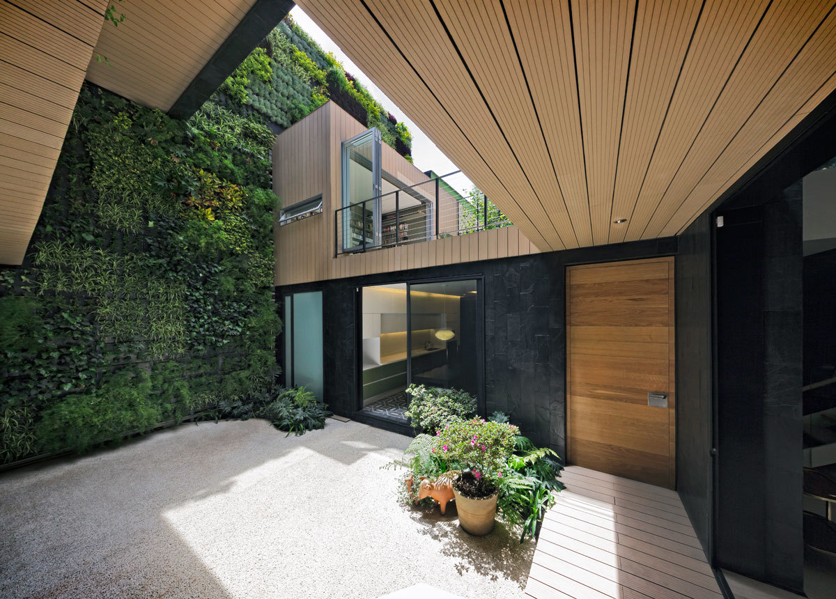 Patio View and vertical garden. Photo Hector Armando Herrera.