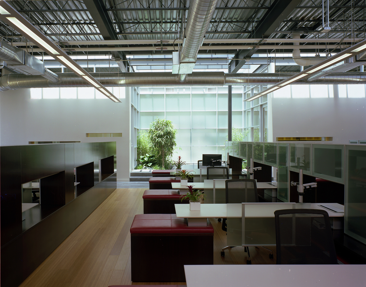 Another band of glass, this time in plane with the roof, fills a landscaped space. The high ceilings, open workspace and furniture design respond to staff circulation patterns and stimulate communication with transparency. Opaque barriers are absent while personal space is retained. (photo by Greg Murphey)