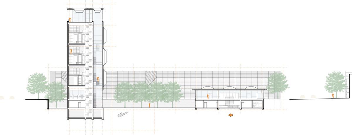 Longitudinal Section - A dialogue with Saarinen