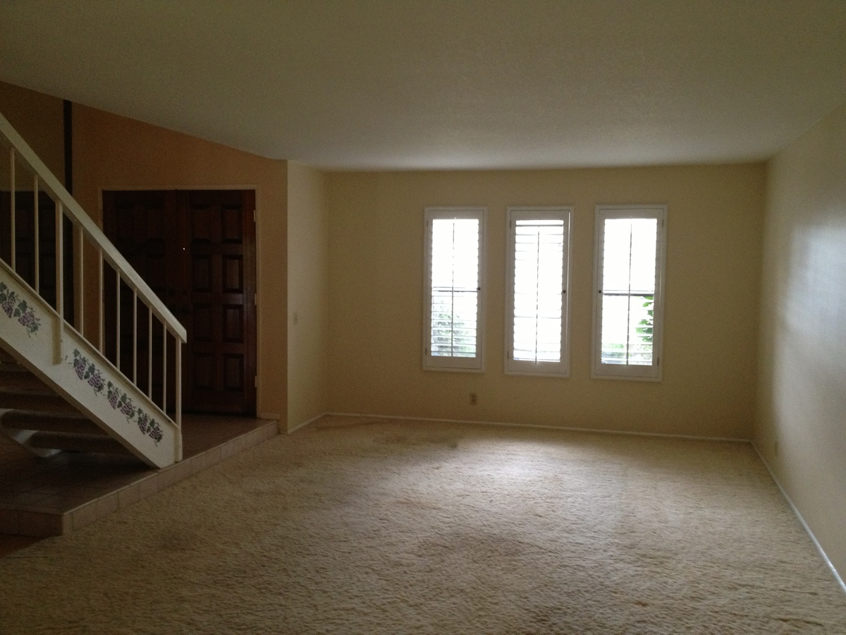 Living room,existing condition