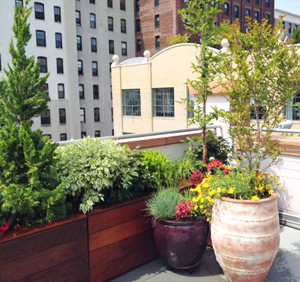 Brooklyn Nyc Backyard Patio And Rooftop Terrace Garden Design Amber Freda Nyc Home Garden