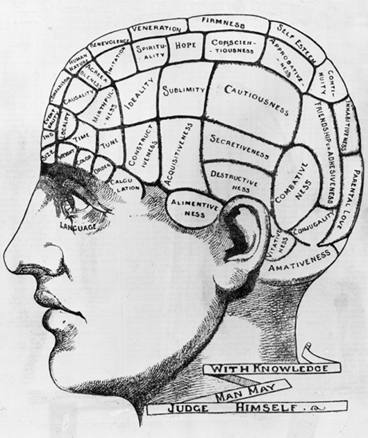 Phrenology diagram, Hulton Archive/Getty Images. Via Esquire.com
