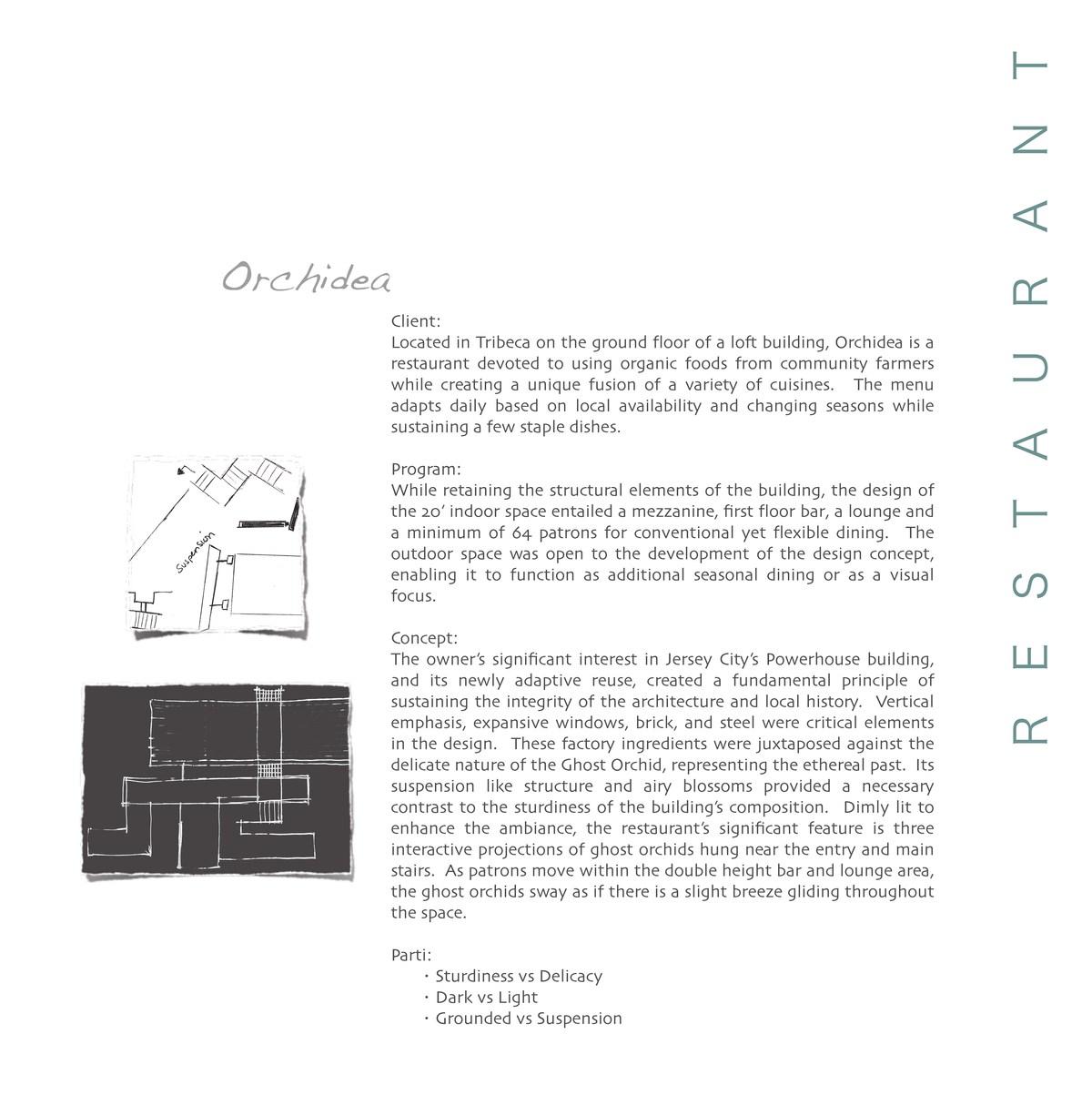 Client, Program & Concept
