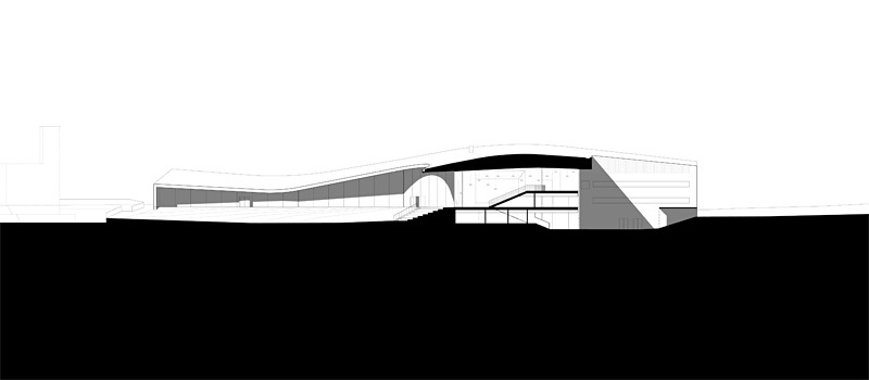 Section (Image courtesy of Verstas Architects)