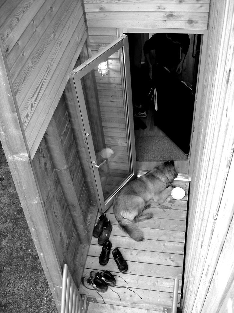 nala on mosher cottage porch