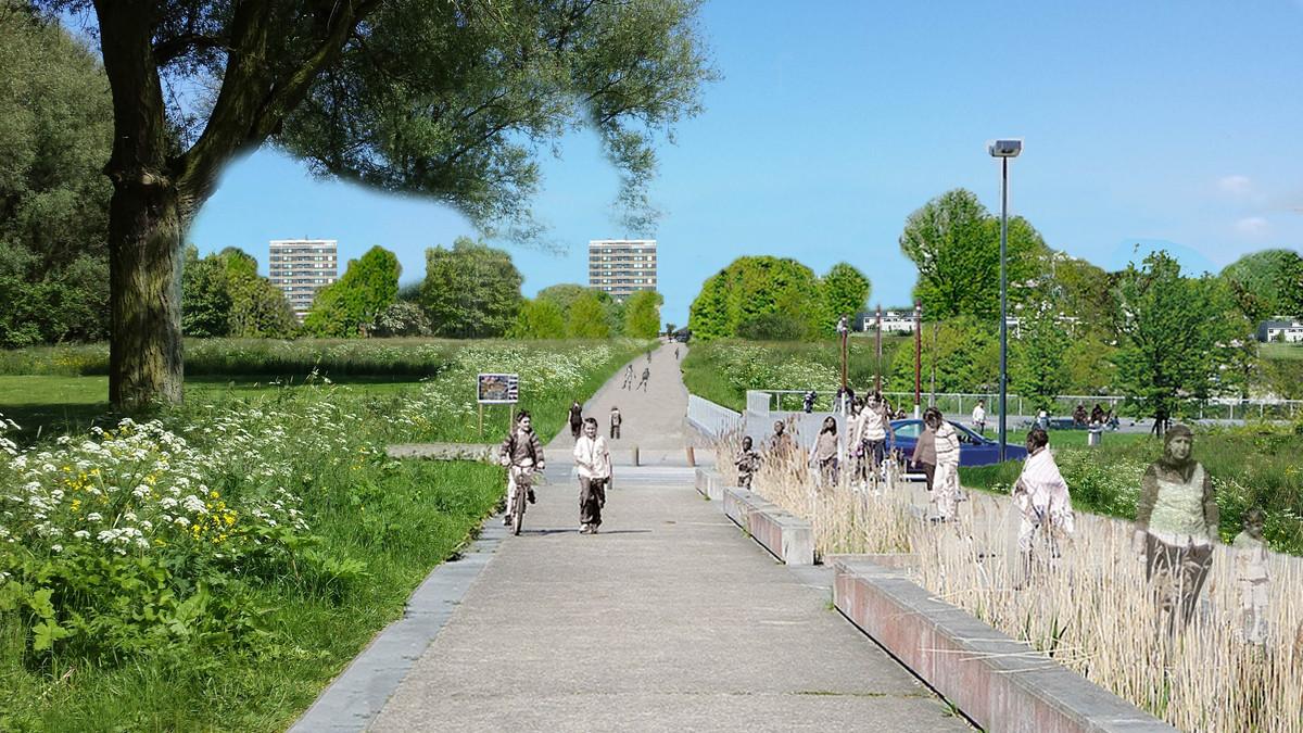 Urban Park De Krabbeplas Gigi Ijdo Archinect